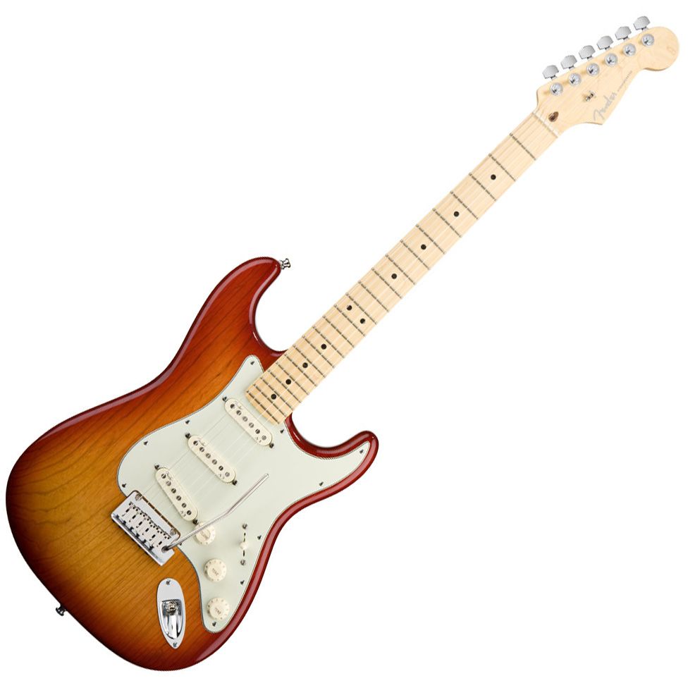 The Stratocaster